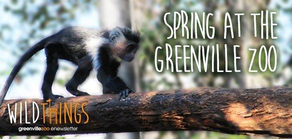 Greenville Zoo Newsletter