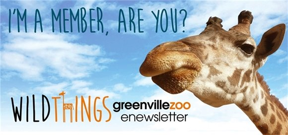 Greenville Zoo Newsletter