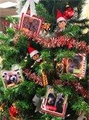 Animal Wish List Ornaments